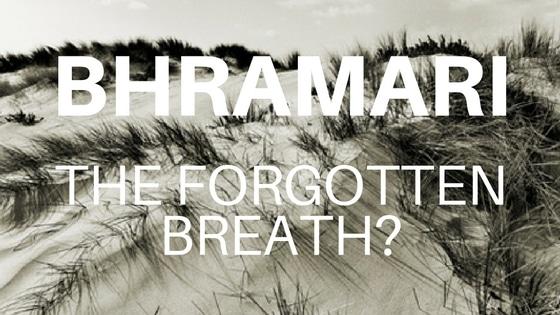 Bhramari Pranayama Yoga Teaching